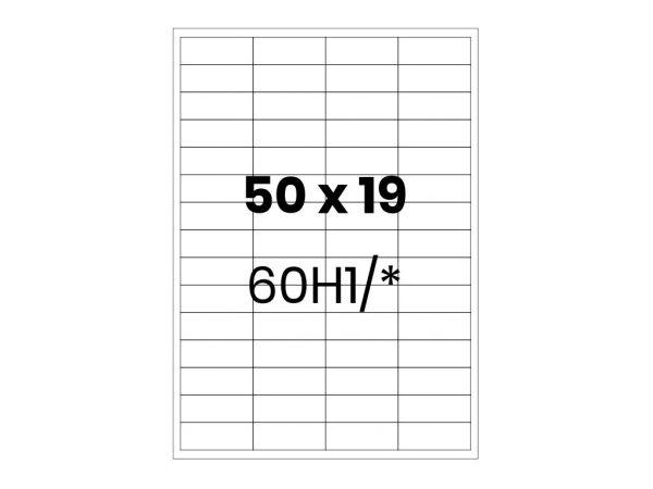 Lipnios etiketės A4 / 50x19 mm